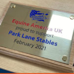 Infilled plaque Mirror Brass for Equine America